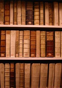 Bibliotheke3.jpg